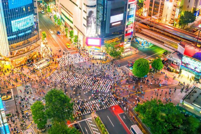 shibuya-crossing-top-view-tokyo-shibuya-crossing-top-view-twilight-tokyo-japan-95010781